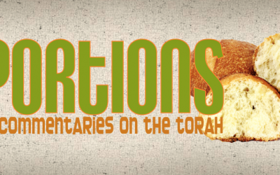 Torah Portion – Re'eh (D'varim 11:26 – 16:17)